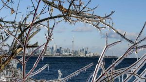 The Weather Network's prediction of a rough winter is coming to fruition in the GTA and Star photographers captured the city in all its winter glory. Here, the skyline is seen through ice-covered branches at Humber Bay Park West in Etobicoke.
