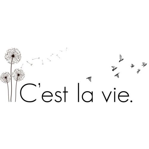 C'est la vie - one of my favorite phrases