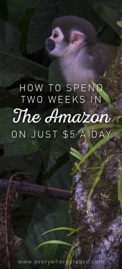 Amazon rainforest on a budget | Backpacking in the Amazon | Amazon in Ecuador | Volunteering in the Amazon | Budget travel Ecuador | Ecuadoran Amazon
