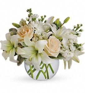Add a little class to any space with the Isle of White bouquet. Created with crème roses, white asiatic lilies and stock stem, this bouquet delivers a oasis of beauty and elegance. Order online. http://www.westerlyriflowers.com/westerly-flowers/isle-of-white-372732p.asp?rcid=6294&point=1