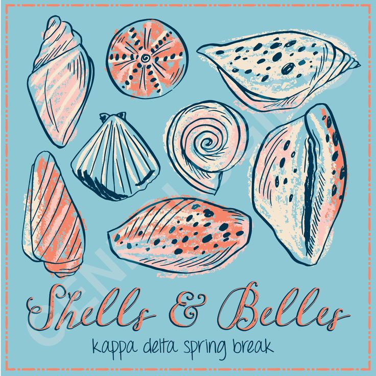 Shells and Belles. Geneologie | Greek Tee Shirts | Greek Tanks | Custom Apparel Design | Custom Greek Apparel | Sorority Tee Shirts | Sorority Tanks | Sorority Shirt Designs  | Sorority Shirt Ideas | Greek Life | Hand Drawn | Sorority | Seashell | KD | Kappa Delta | Beach | Spring Break