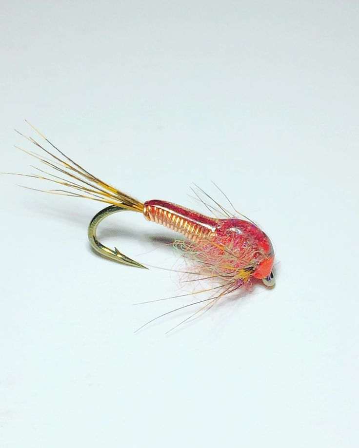 55 best steelhead flies images on pinterest fishing fly for Fly fishing nymphs