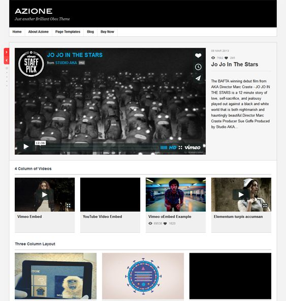 This video WordPress theme comes with support for self-hosted videos, visual customization, oEmbed functionality, automatic image and video resizing, support for HD videos, a drag and drop widget system, and more.