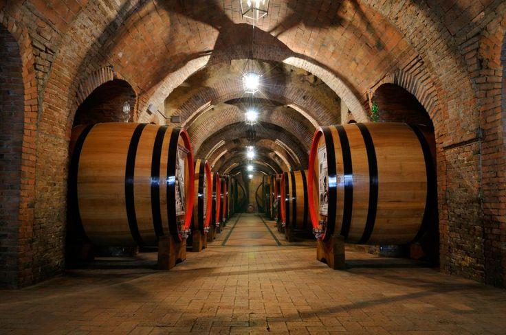 Vins de Bordeaux : l'été indien laisse augurer un millésime de qualité - 15/09/2014 - ladepeche.fr