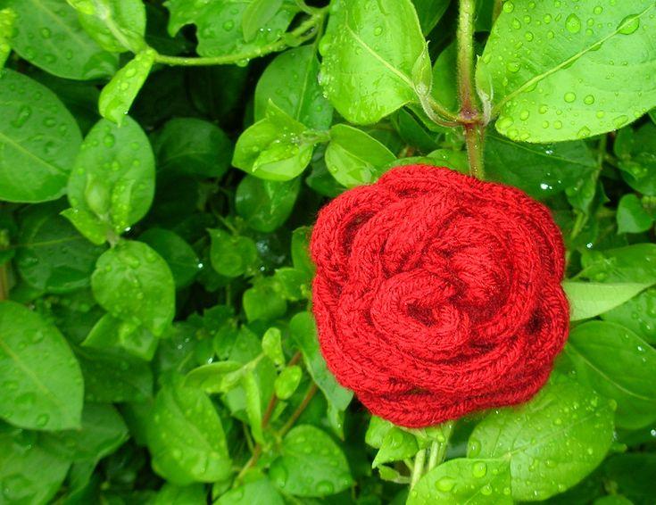 Knitting Rose Yarns : Red rose french knitting brooch wool hair clip
