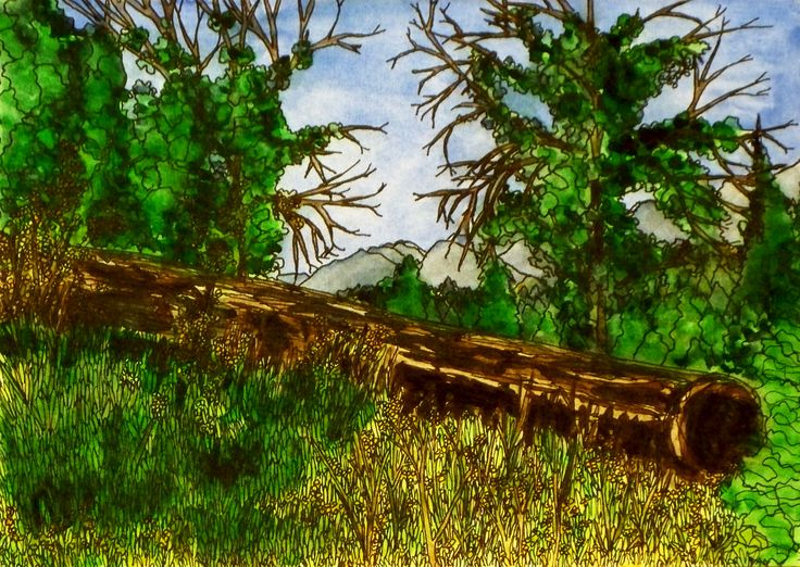 """""""The Meadow's Edge""""  Watercolor & Ink 5"""" x 7"""""""