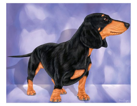 A Courageous Dachshund- Art Print of Original Painting. This original colorful painting is drawn by hand, using a digital Wacom pen. SIZE: The actual image area is 8 x 10 and is centered on 8.5 x 11 (21.59 cm x 27.94 cm) paper. There is a white border around all sides, as shown. The