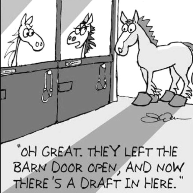 haha a little horse humor :)