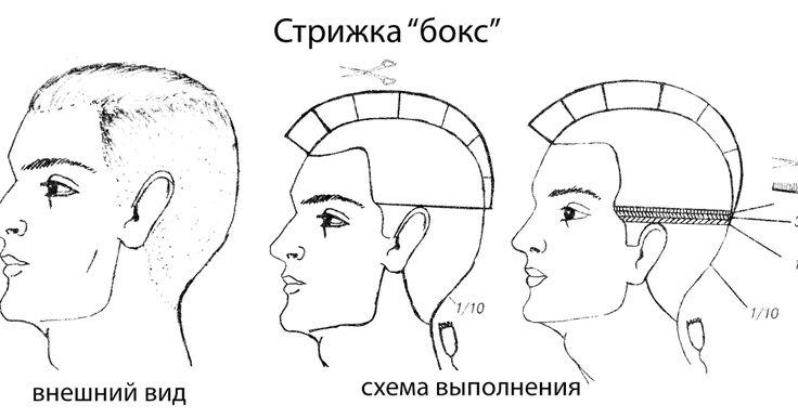 Стрижка бокс рекомендуется для коротких волос любого типа. Стрижка нежелательна в случаях, когда кожа головы имеет дефекты. Инструмен...