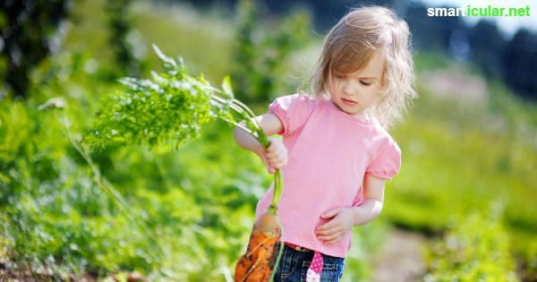 Warum du für dein Kind unbedingt ein Kinderbeet anlegen solltest - mit vielen Tipps für Gestaltung und Pflanzenauswahl.