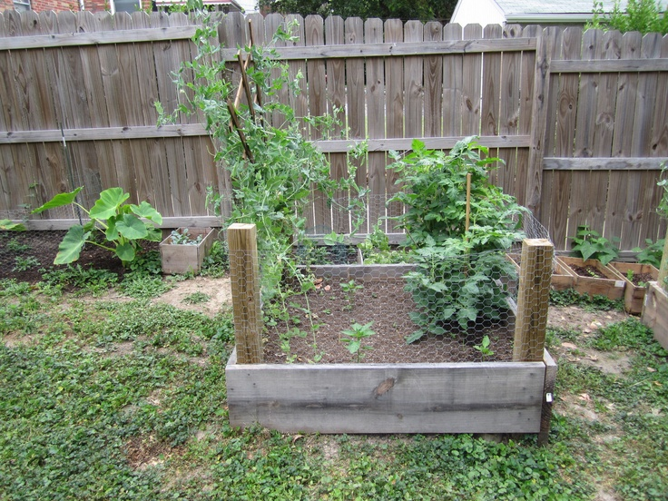 Smaller square foot planter box  http://stlgarden.blogspot.com/