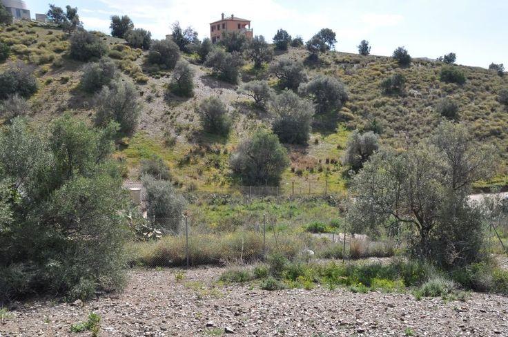 Building Land For Sale Benajarafe, Malaga, Andalucia, Spain,  bedroom,  bathroom, € 35,000 , RF152886, 34952541794, Feed ref: 16035