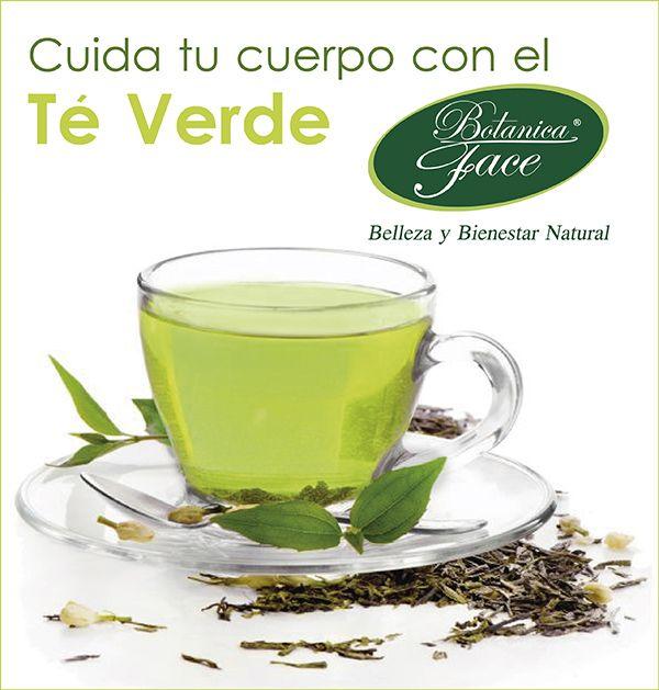 El té verde aporta grandes e importantes beneficios al cuerpo. Entre algunas de sus propiedades está la de ser antioxidante, bueno para bajar de peso y para la dentadura.