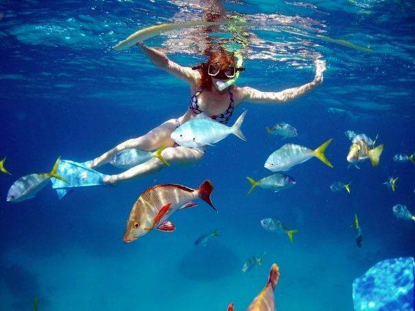 Go snorkelling off your boat