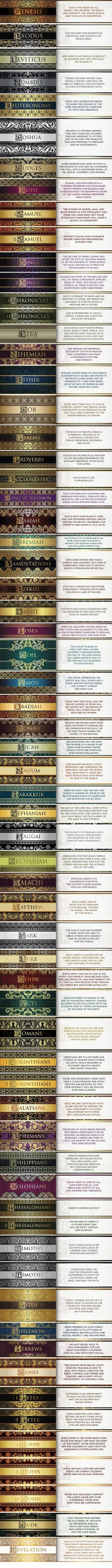 Beautiful Overview of the Bible - Take the fastest journey through the Bible you have ever experienced! by theresa