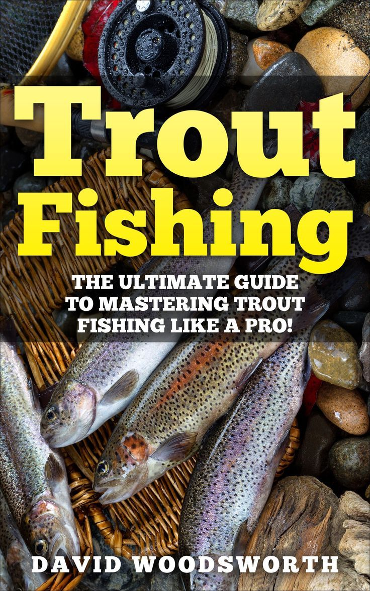 275 best trout fishing images on pinterest fishing for Trout fishing basics