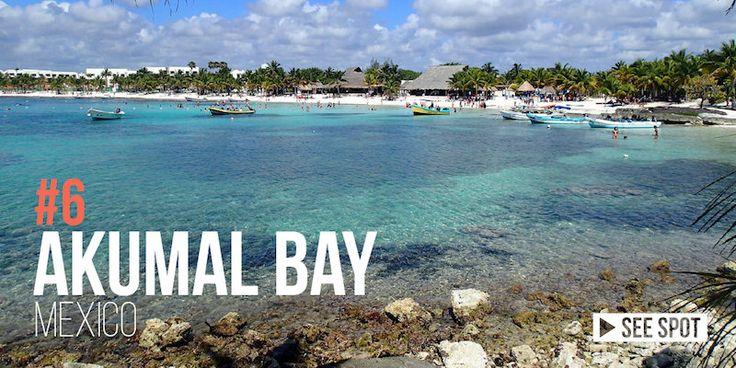 Akumal Bay Mexico Best beach Snorkeling