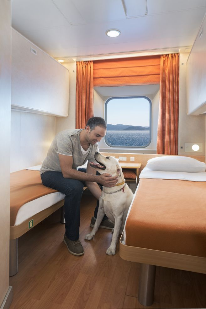 In our cabins you will find the most comfortable and cleanest facilities and in our pet cabins you can enjoy the sea view with your beloved pet
