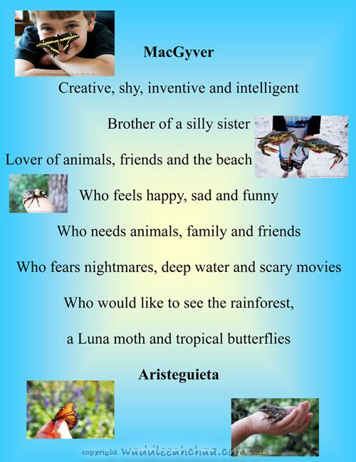 poetry templates for kids - 15 best biopoems images on pinterest handwriting ideas