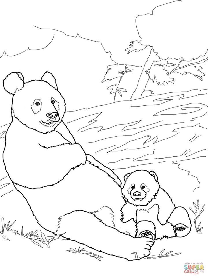 Panda Mother With Baby Coloring Page From Giant Category Select 27260 Printable Crafts Of Cartoons Nature Animals Bible And Many More