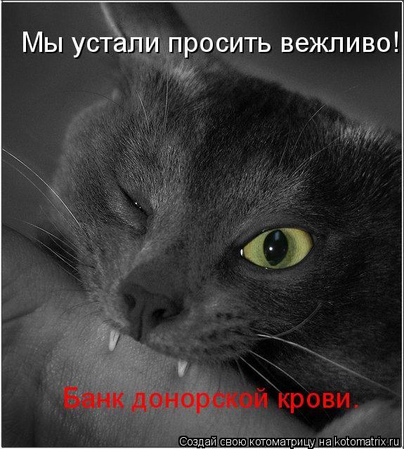 Мы устали просить вежливо! Банк донорской крови....