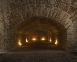 Christiansborg Slot ruins