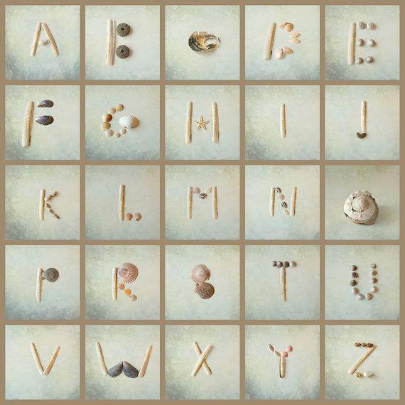 Fotografia di mare conchiglia alfabeto di OverTheRainbowPrints