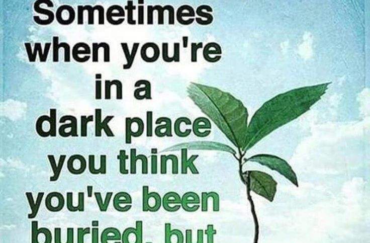 Sometimes when you are in a dark place you think you have been buried, but actually you have been planted!