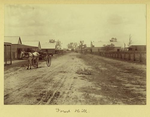 1910 Horse and cart on the main street of Forest Hill Queensland