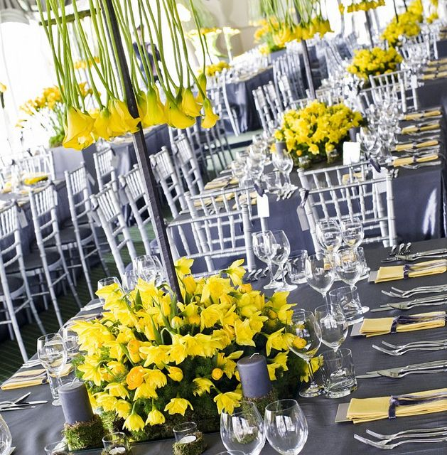 This picture shows one of the gorgeous tables for this stunning wedding. The grey velvet napkin ribbon matches the super silver taffeta tablecloths and the yellow linen napkins match the stunning yellow flower arrangements of lilies and daffodils.     nice