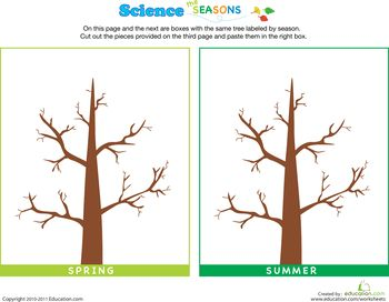 78 images about science on pinterest trees tree rings and activities. Black Bedroom Furniture Sets. Home Design Ideas
