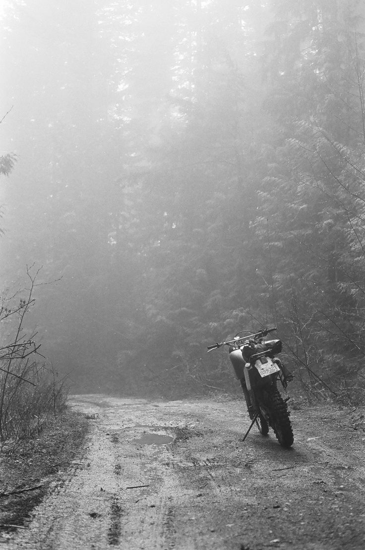 love the fog! and pine trees... and motorcycles... and back roads... not…