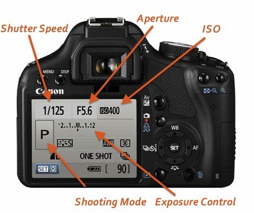 Learn How To Use Manual Mode On A DSLR Camera With This Easy Photography Tutorial - Whole Lifestyle Nutrition | Organic Recipes | Holistic Recipes
