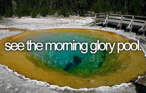 go to the morning glory pool
