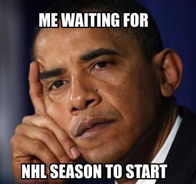 White House Cites Executive Privilege In Refusing To: 772 Best Hockey Memes Images On Pinterest