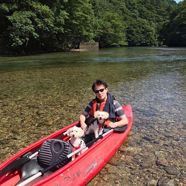 I canoed with my family last weekend. * マリコロも一緒に初のカヌー体験❣️ * 那須では、 久々に夏らしい過ごし方を送りました * * * #nikon #instadog #inutokyo #poodle #doglife #doglover #ilovemydog #icu_japan #igersjp #igdogs #canoe #dogoftheday #east_dog_japan #maltipoo #maltese  #ダップー #マルプー #マルックス #トイプードル #マルチーズ #ミックス犬 #犬のいる暮らし #那須高原 #犬旅 #ダップー会17夏 #カヌー #ダップー会 #愛犬 #多頭飼い #ファインダー越しの私の世界