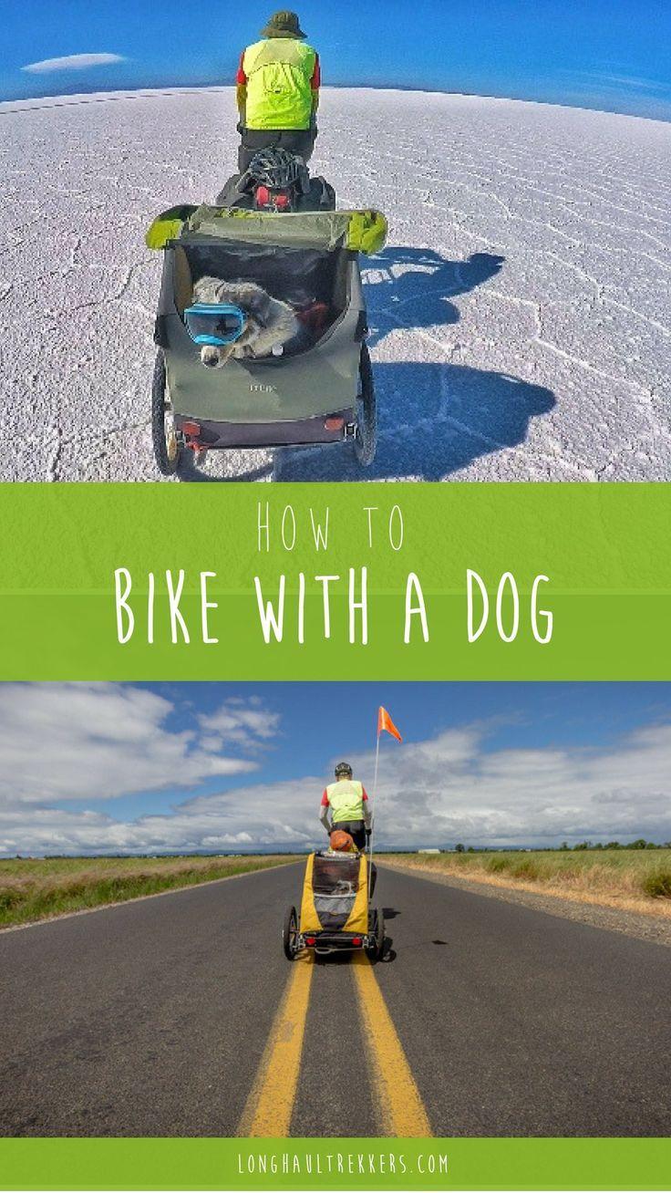 Learn How To Bike With A Dog Long Haul Trekkers Biking With Dog Bike Trips Bike Riding Benefits