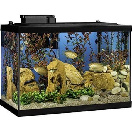 Tetra Aquarium Kit 20 Gallon Standard