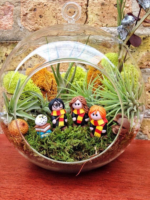 Such a cute gift for Harry Potter fans - Harry Potter and Friends Terrarium! *Harry Potter and the Herbology class*