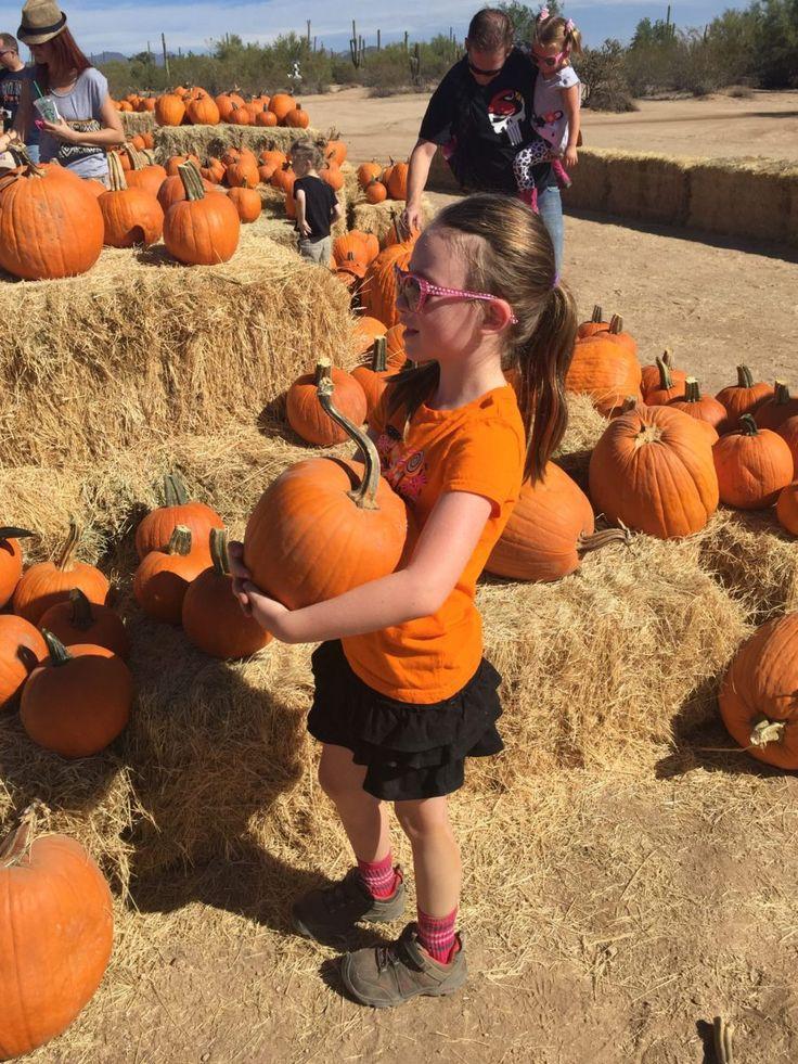 Pumpkin Patch and Fall Festival List 2017