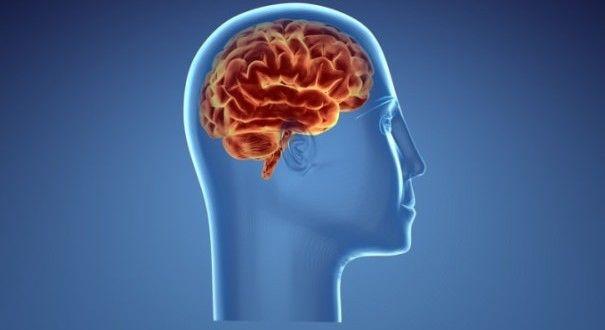Tips Meningkatkan dan Menjaga Kesehatan Mental | Kolom Sehat