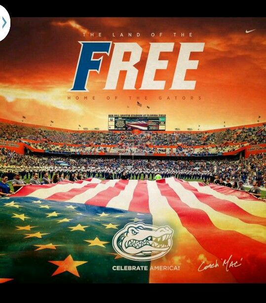 Happy 4th from the Swamp!