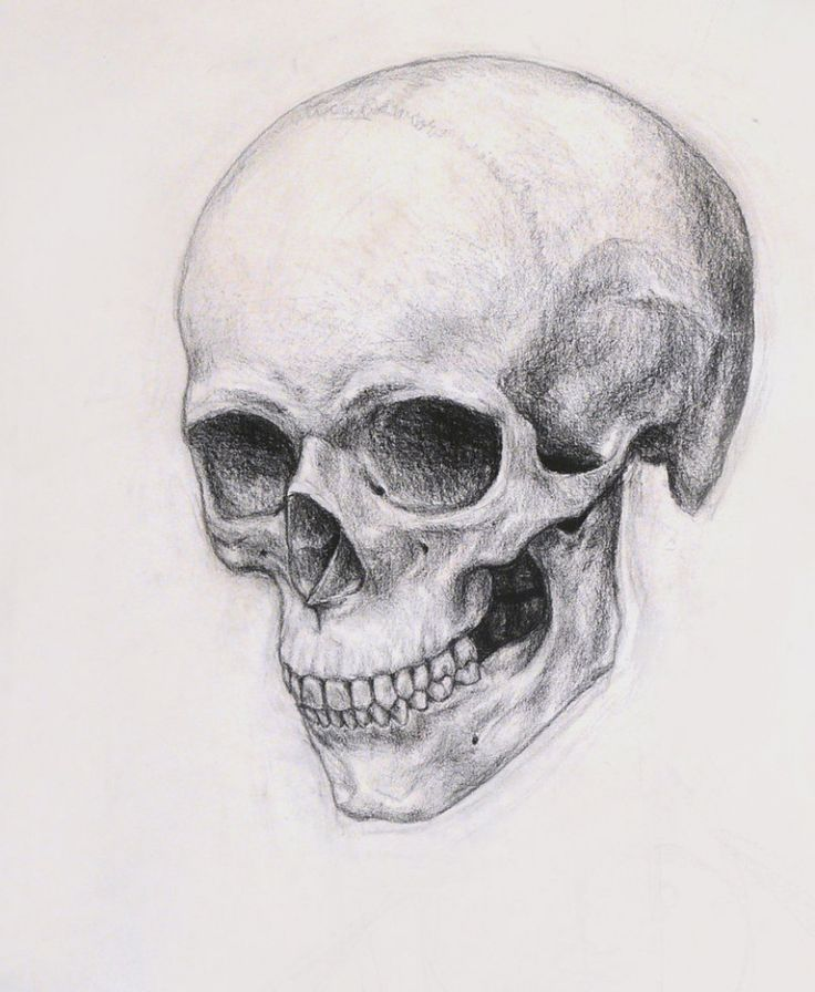 Realistic Skull Drawing Realistic Skull Drawing How To ...