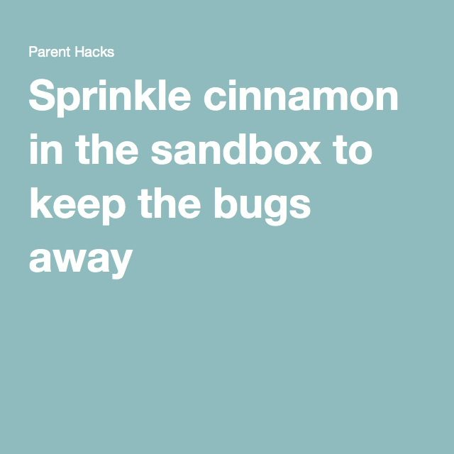 Sprinkle cinnamon in the sandbox to keep the bugs away