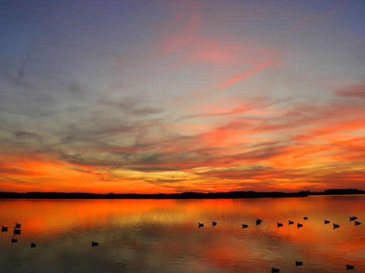 Sunset Duck Blind Back Bay Painting Inspiration And