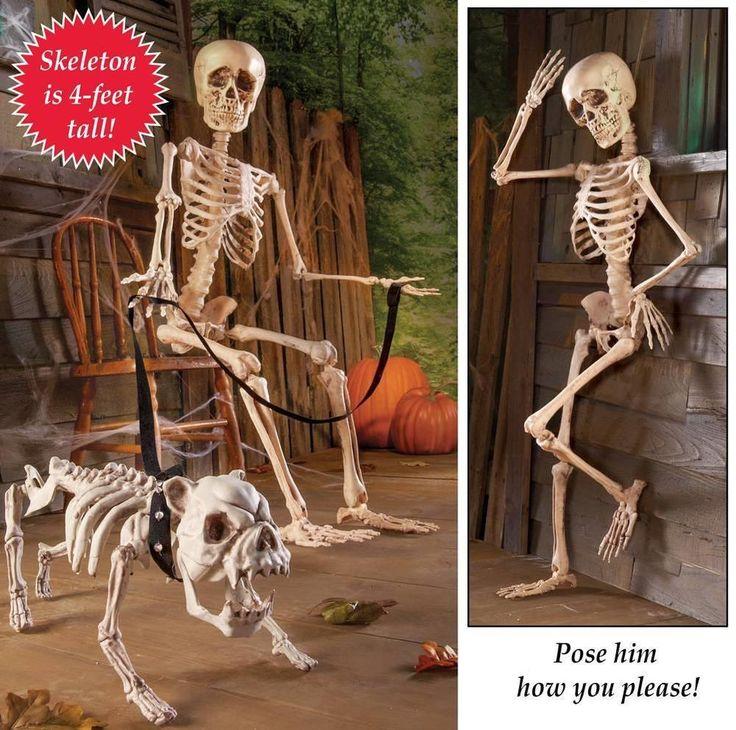 "Creepy Posable Skeleton Halloween Decor 48"" Tall #WMI"