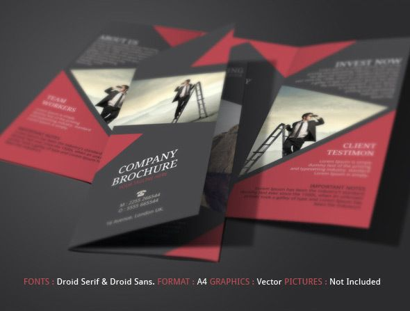 Best Brochures Images On   Tri Fold Brochure Design