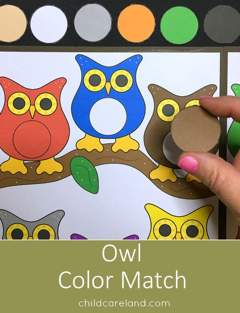 Owl color match file folder game for color recognition skills.