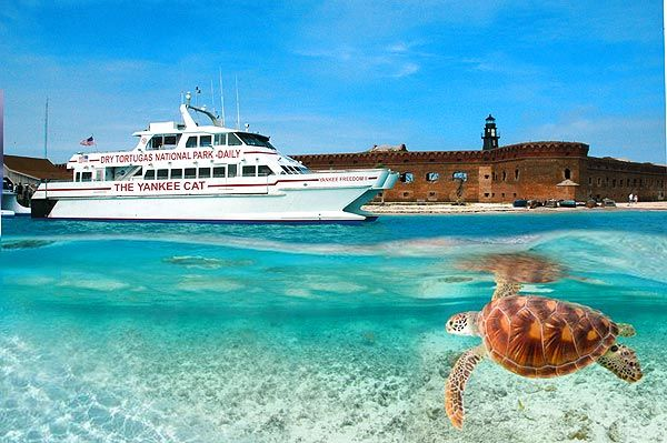 High speed catamaran to the Dry Tortugas and Fort Jefferson. Tour the fort, snorkel the waters, see the aquatic and bird life.