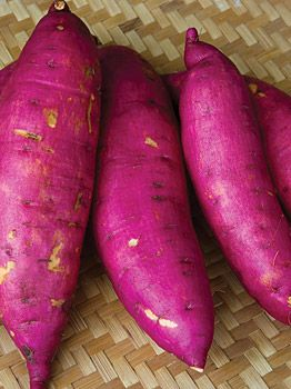 Murasaki Purple Sweet Potatoes with white flesh...I will have to order some of these this year...